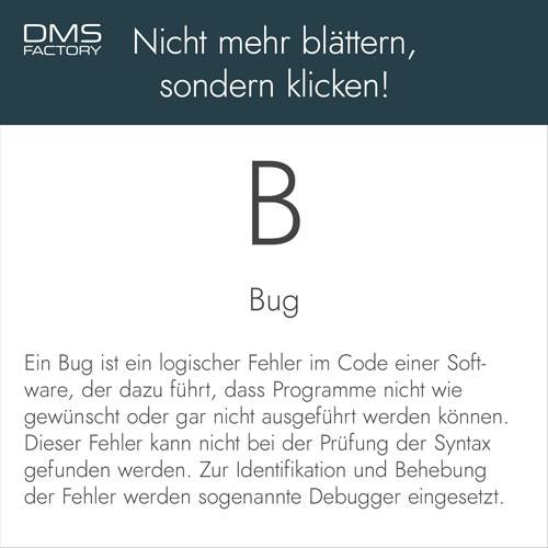 Glossar: Bug