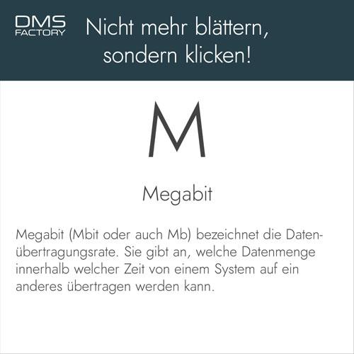 Glossar: Megabit